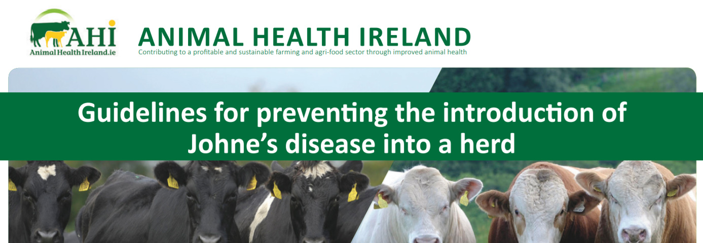 Animal Health Ireland - Guidelines for preventing the introduction of Johne's disease into a herd