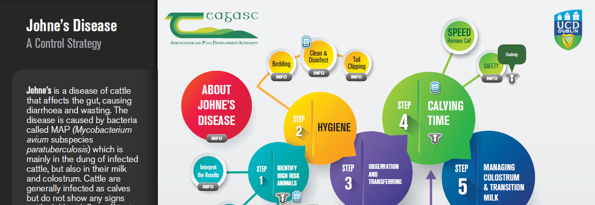 Johne's Disease - a control strategy